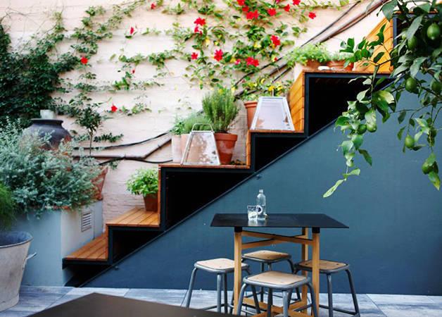 cafe federal, terrazas a la sombra