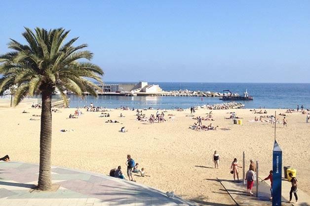 picnic en la playa de Barcelona