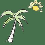 dibujo palmera sol