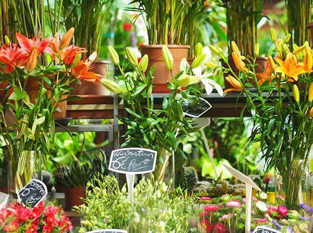 mercado Barcelona mercat de la concepcio flores