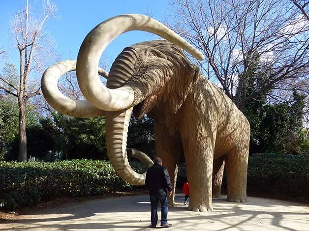 parc de la ciutadella mamut