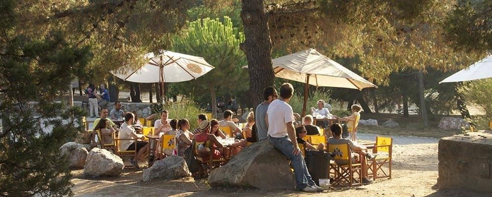 Terrazas a la sombra en Barcelona: lugares frescos para protegerse del calor