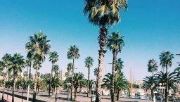 Barcelona en unas horas