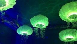 Verne méduses déco en vert et bleu