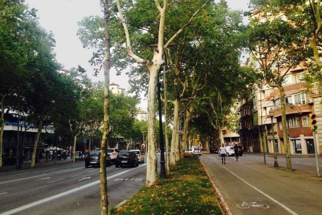 Diagonal correr en Barcelona