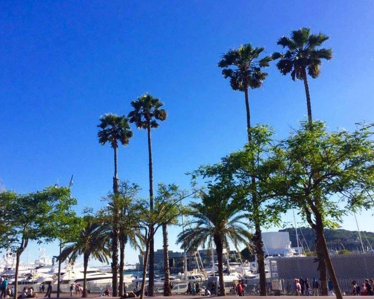 qué hacer en Barcelona: consejos